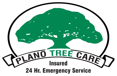 Plano Tree Care Logo